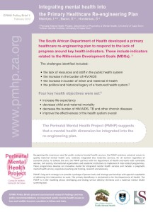 CPMH_PolicyBrief#1